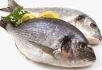 معنى السمك النيء في المنام