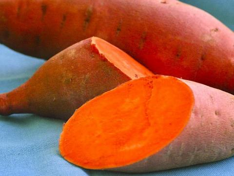 sweet potatoes Foods You Can Eat To Become Sweet And Strong In Bed