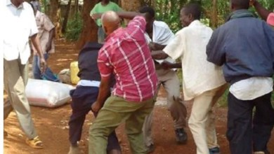 Horror As Four Sons Kill Father For Having magic sex With Their Wives