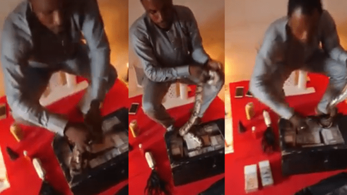 Video Of A Live Snake Money Ritual Has Emerged