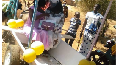 Newlyweds chauffeured on a donkey cart in Tumu [Photos]