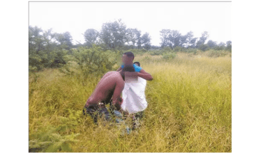Video Of Drunk Couple Having Sex In The Bush Goes Viral