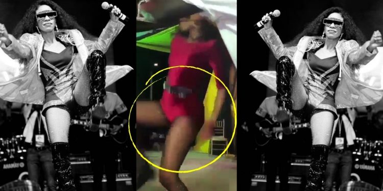 Swangz avenue singer Kicks Sudanese Fan for Touching her Tiny Pussy