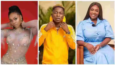 Emelia Brobbey 'Chopped' Shatta Wale while he dated Michy; Insider drops bomb [Video]