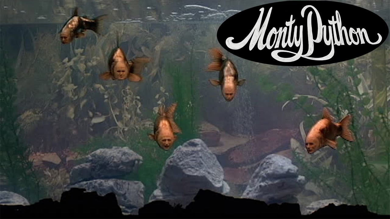 Find The Fish The Classic Surreal Intermission Sketch From Monty Pythons 1983 Film The