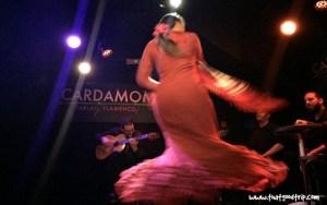 Flamenco dança
