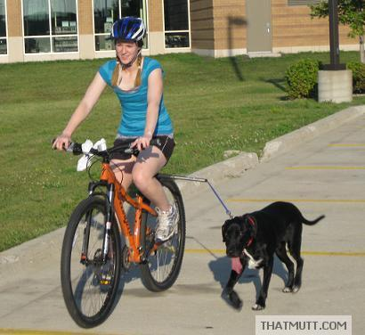 Girl riding her bike with black dog and a hands free dog bike leash