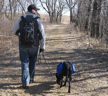 Man and dog walking together in the woods with backpacks