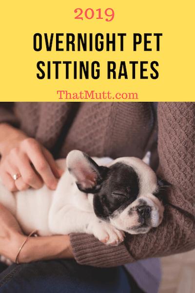 2019 pet sitting rates