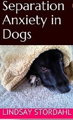 Stop a dog's separation anxiety ebook