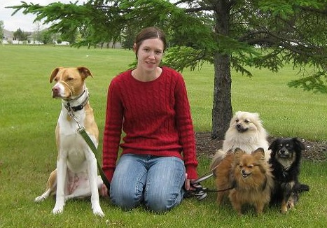 I will walk four dogs at once