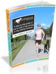 Ebook by Lindsay Stordahl