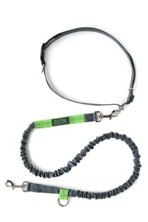 Mighty Paw hands free leash