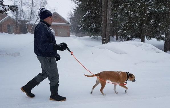 Walking Baxter
