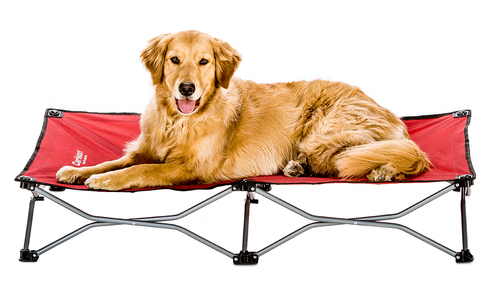 Carlson Portable Dog Cot Dog Bed For Camping And Adventures