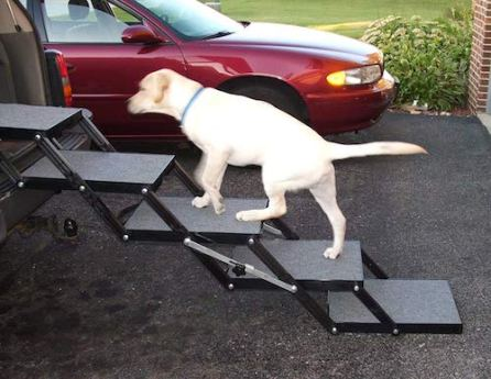 Pet Loader stairs to help your dog get in the car