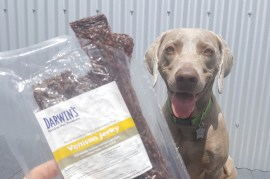Darwin's Venison Jerky Treats for Dogs – Venison Meat for Dogs