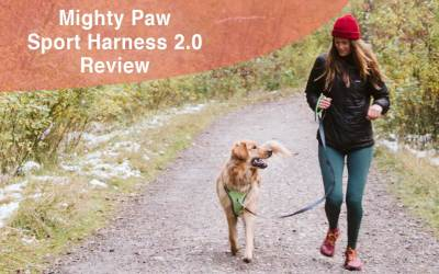 Mighty Paw Sport Harness 2.0 Review