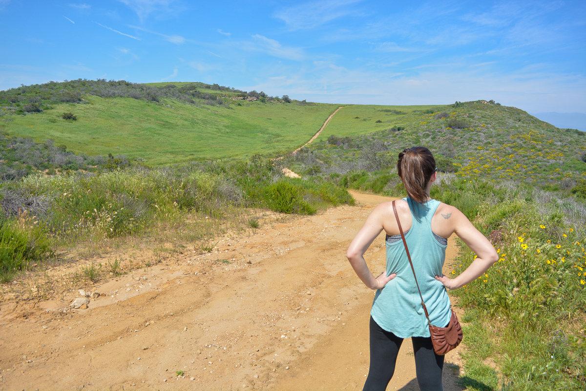 Hiking in Laguna Coast Wilderness Park Orange County, California