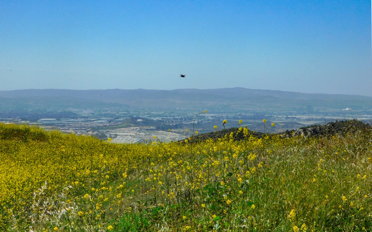 Looking over Orange County from Whiting Ranch Wilderness Park