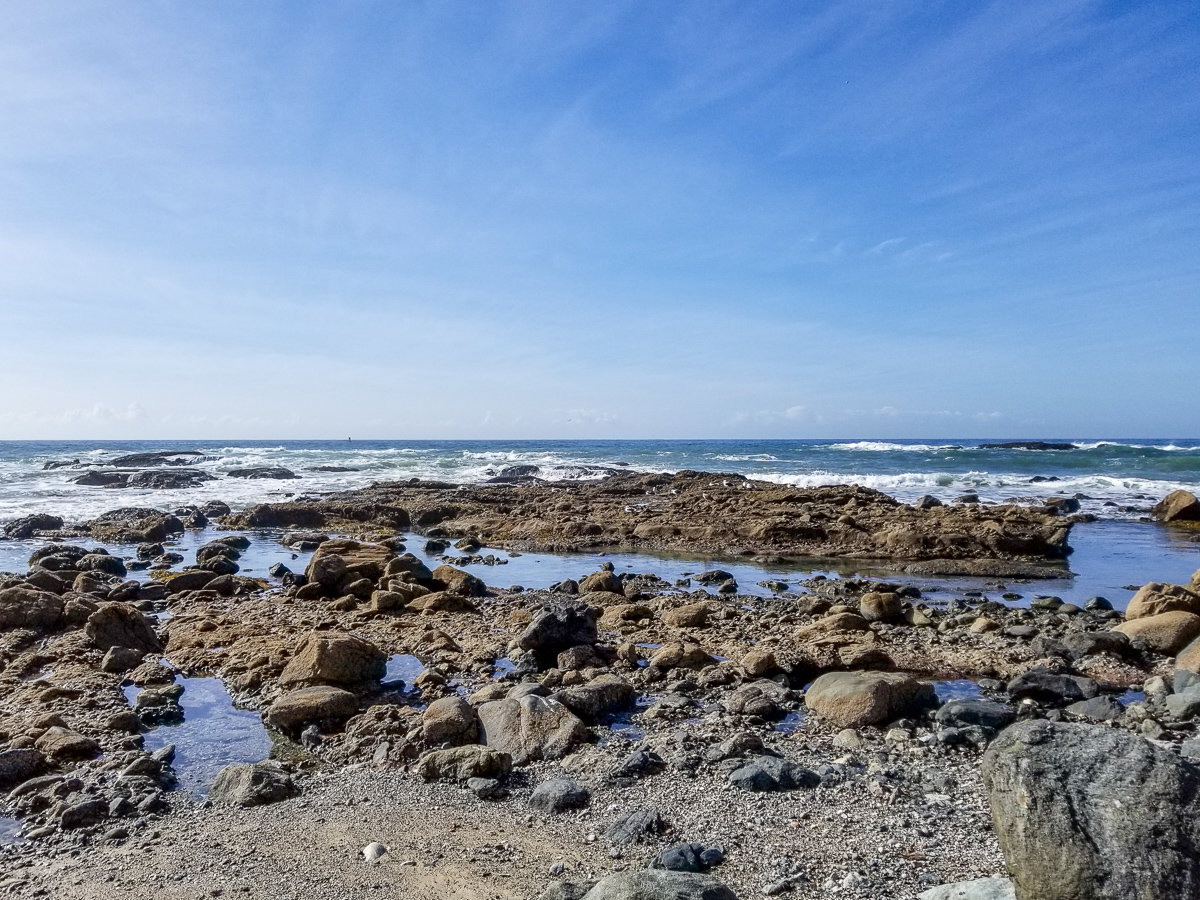 Tide pools in Dana Point