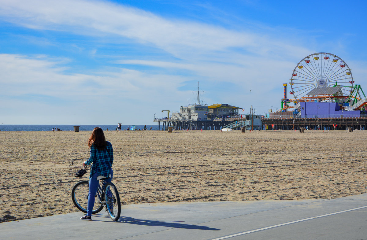 Overview of the Santa Monica Pier