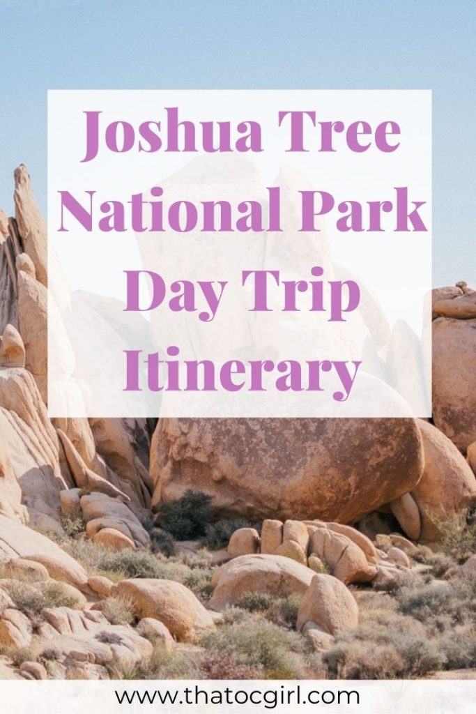 Joshua Tree Day Trip Itinerary: 5 Easy Sights to See in the Park