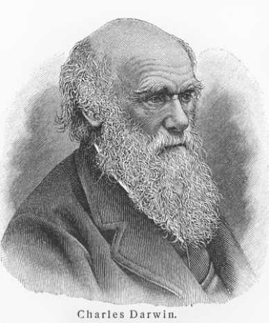 11259821 - charles darwin - picture from meyers lexicon books written in german language. collection of 21 volumes published between 1905 and 1909.
