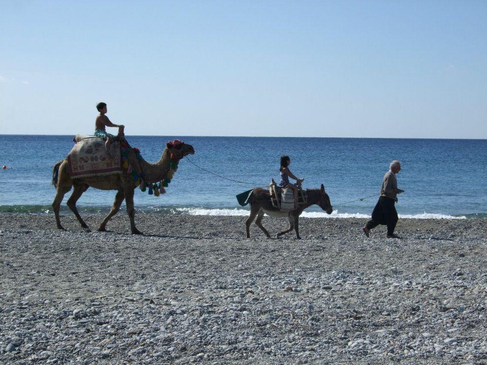 Locals op het strand
