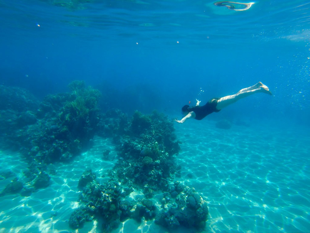 Snorkelling at the Red Sea, Aqaba