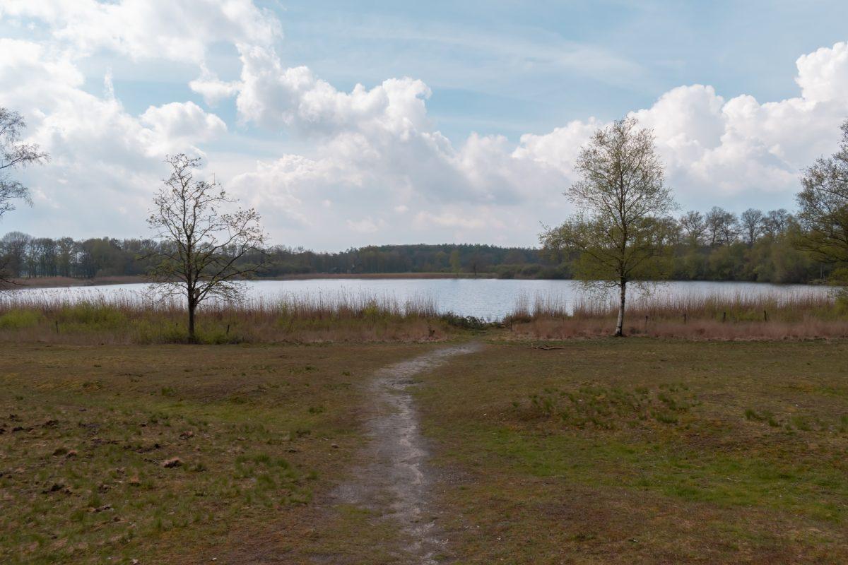 Uddelermeer, de Veluwe 1