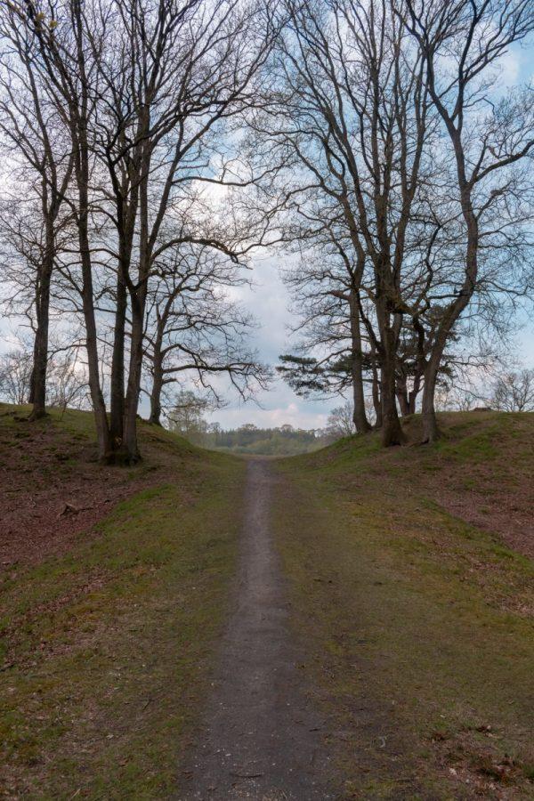 Uddelermeer, de Veluwe 8
