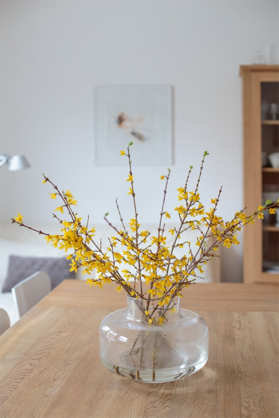 Exminimalist 10 living flowers home scaled