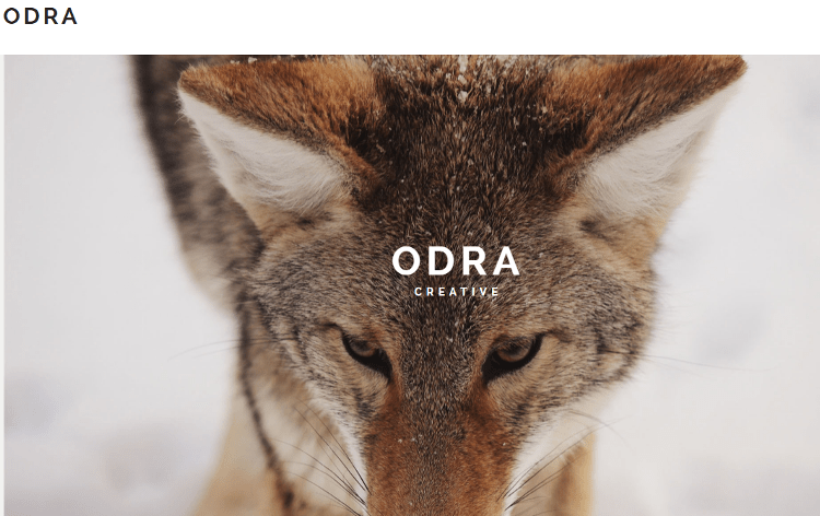 ODRA Adobe Muse Template