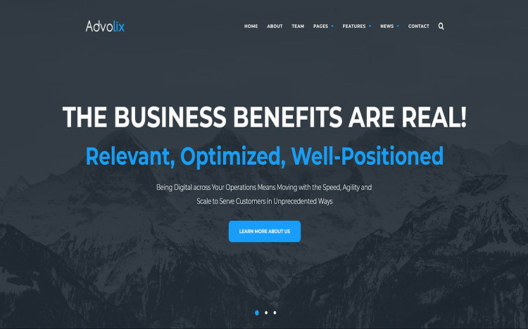 Advolix Consulting Services Theme