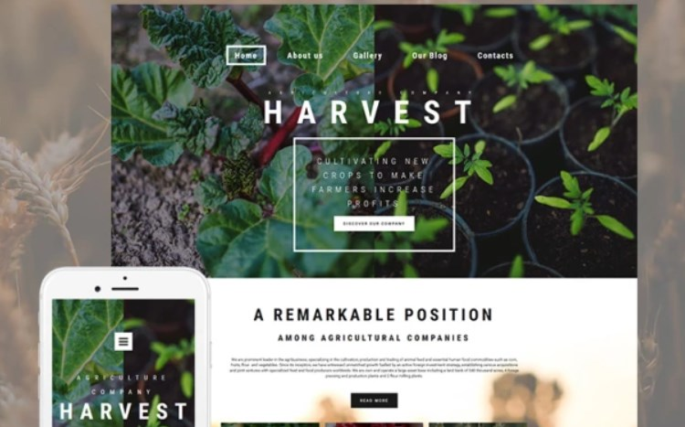 Best Responsive Website Template for Crop Farming
