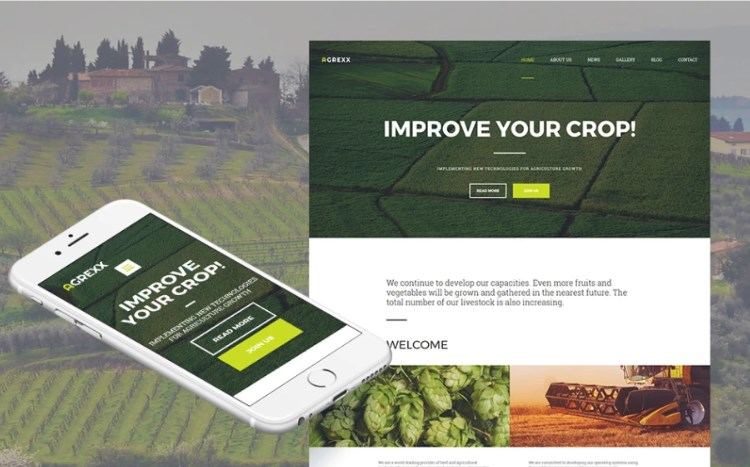 Organic Farm Template for Crop Farming Business