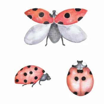 Ladybug package 3 pcs - Wall stories from ThatsMine