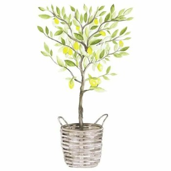 Lemon tree - Wall stories from ThatsMine