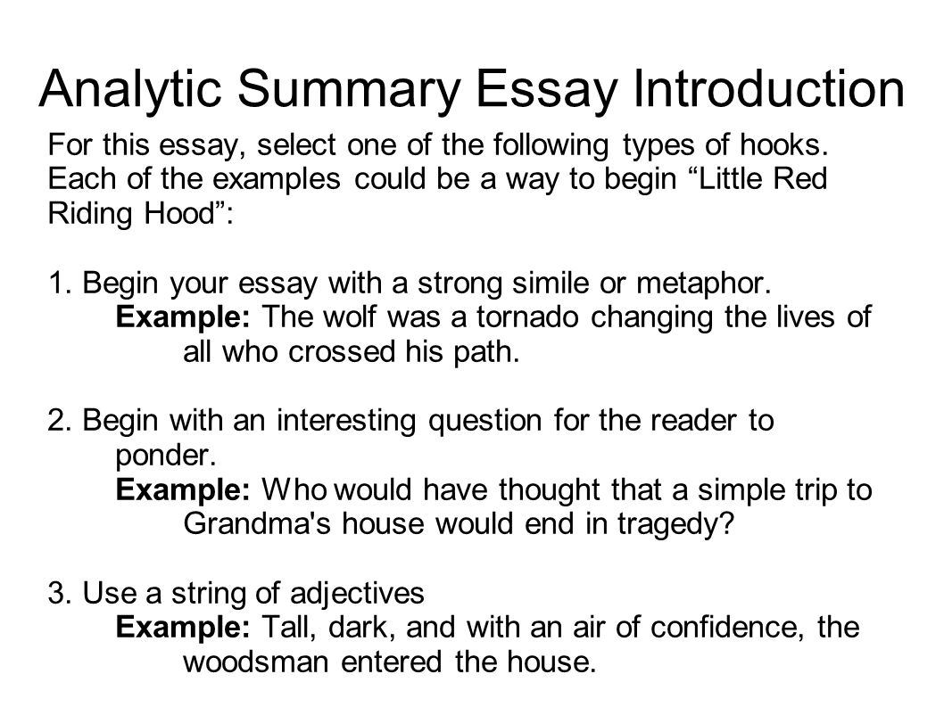 004 Types Of Hooks For Essays Essay Example Examples Co