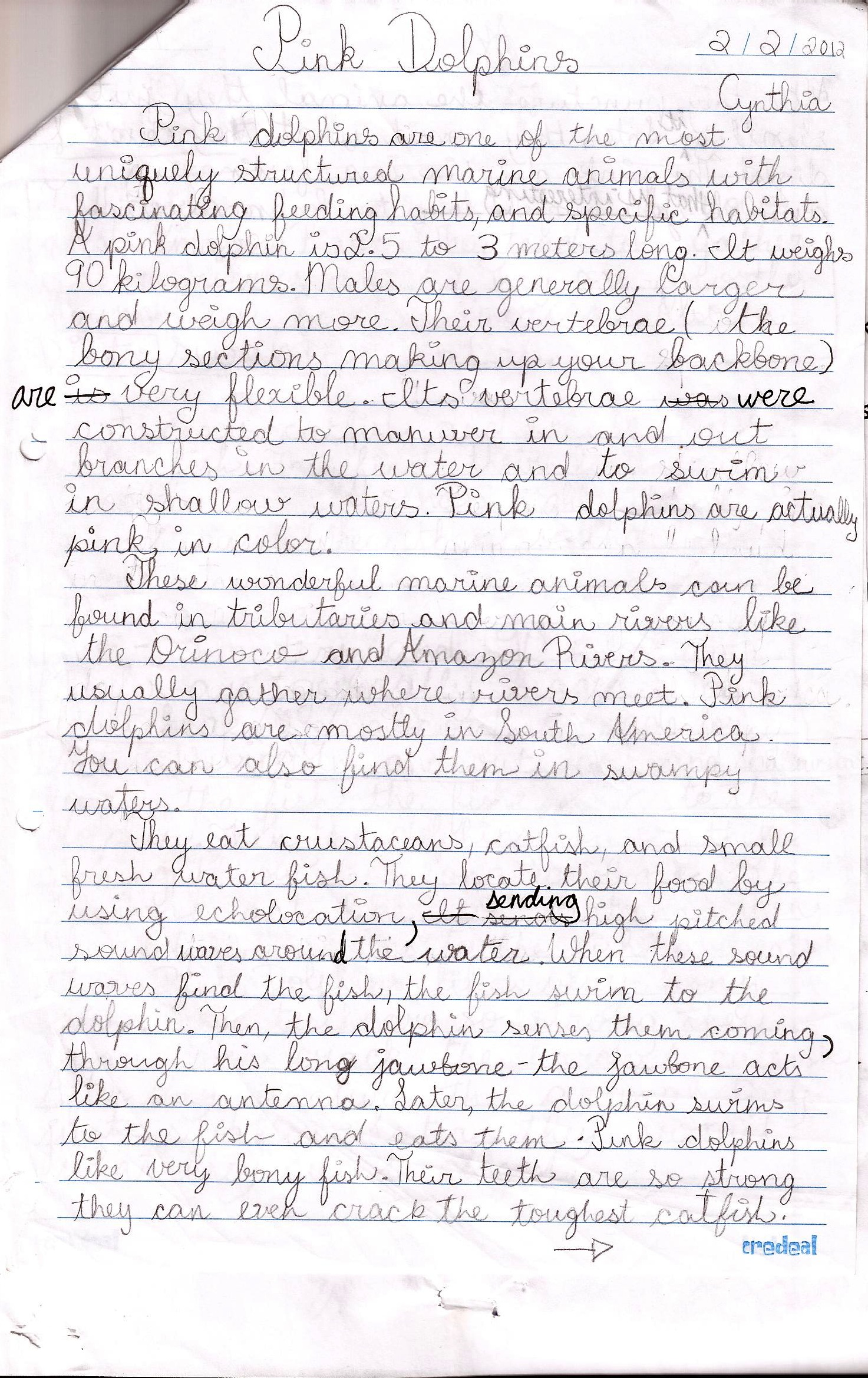 003 5th Grade Essay Informational Topics Exposition For