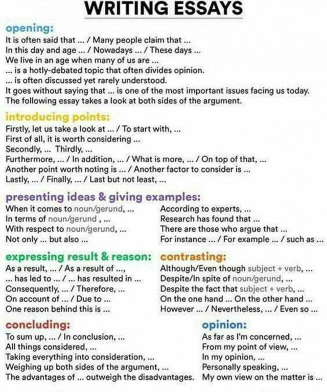 Essay Sample English Essay Writing Format In English Fresh Sample