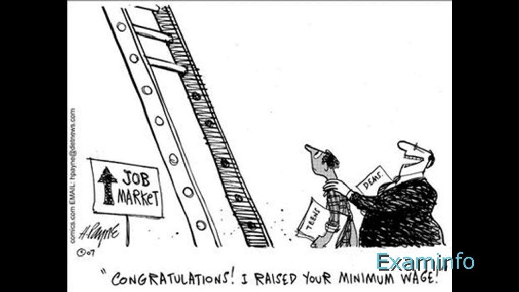 013 Minimum Wage Essay ~ Thatsnotus