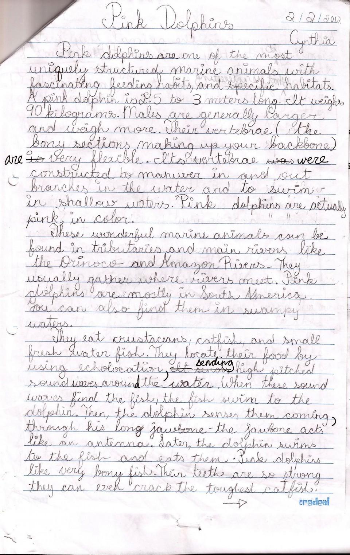 006 Funny Persuasive Essay Topics Example What To Write