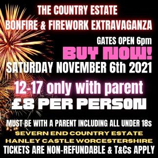 Worcestershire Bonfire Extravaganza Teen Ticket