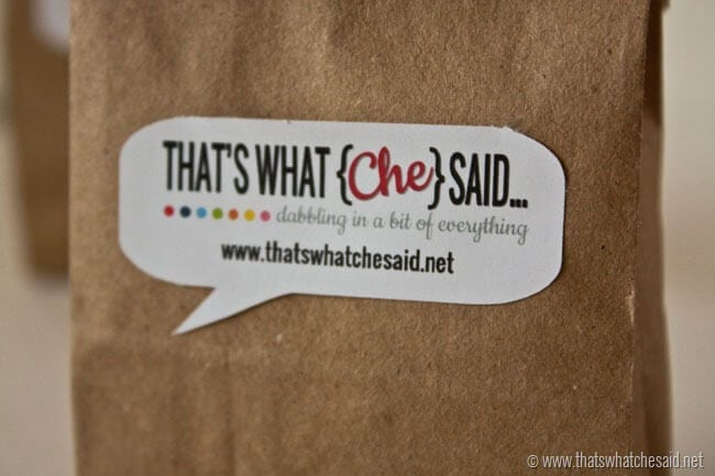 Custom Stickers using Silhouette Print and Cut feature at thatswhatchesaid.net
