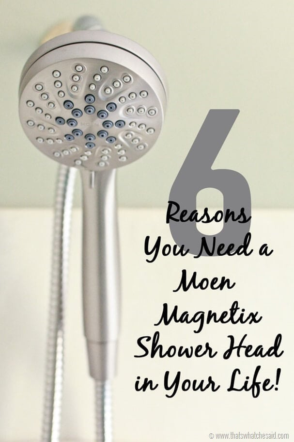 Moen Magnetix Shower Head 3