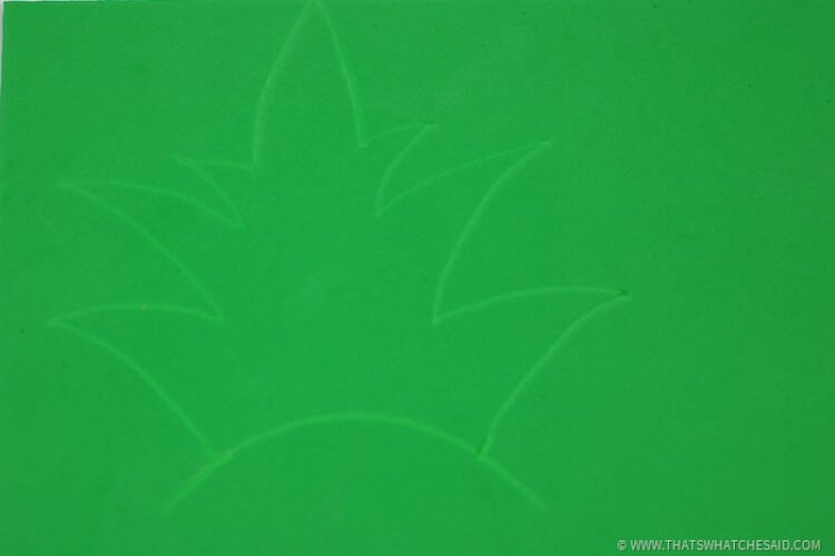 Draw some pineapple leaves