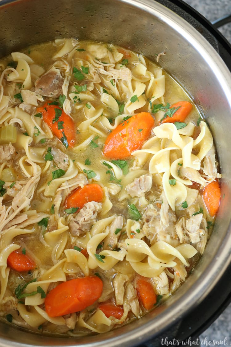 The Best Instant Pot Chicken Noodle Soup Recipe