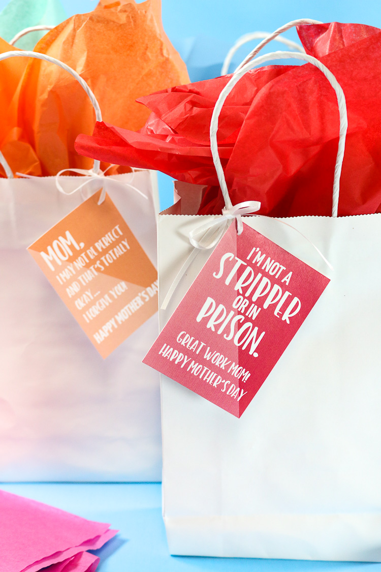 Red and Orange Sarcastic Gift Tags attached to white bags with red and orange tissue paper